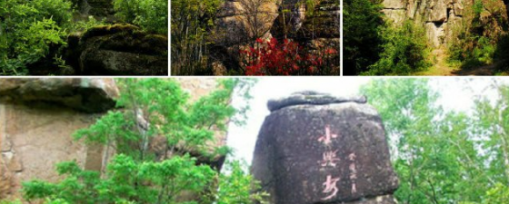 黑龙江汤旺河国家公园