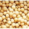 四川五粮液求购东北玉米、高粱、大豆、小麦等原材料
