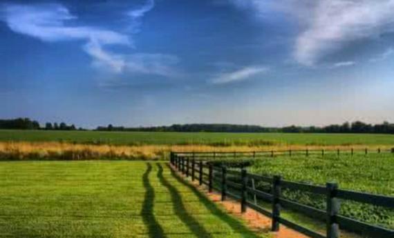 夯实农村土地制度改革的法律基础